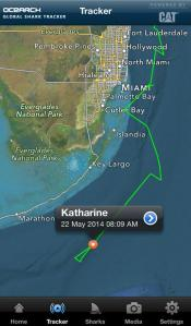 OCEARCH's pings of Katherine the Great White Shark